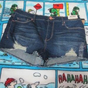 Mudd Shorts - Mudd Shorts Size 13 NWT